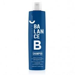 Balance Dual Action Shampoo